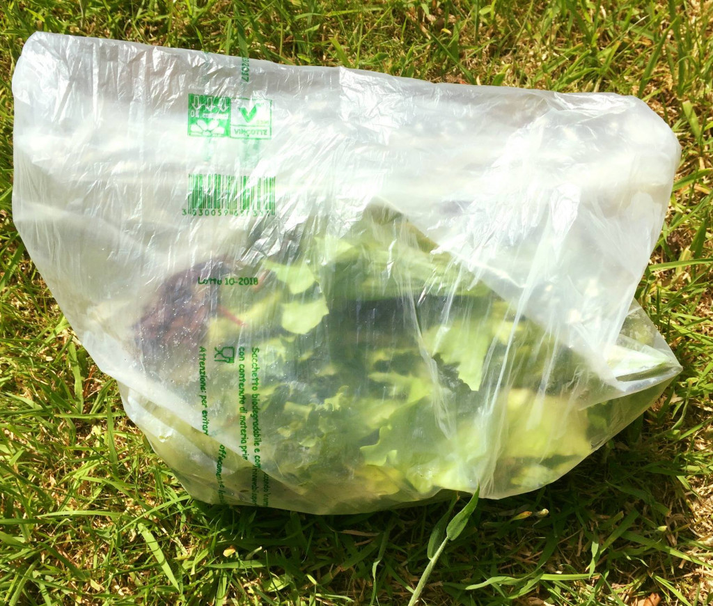 Clear Compostable Bags
