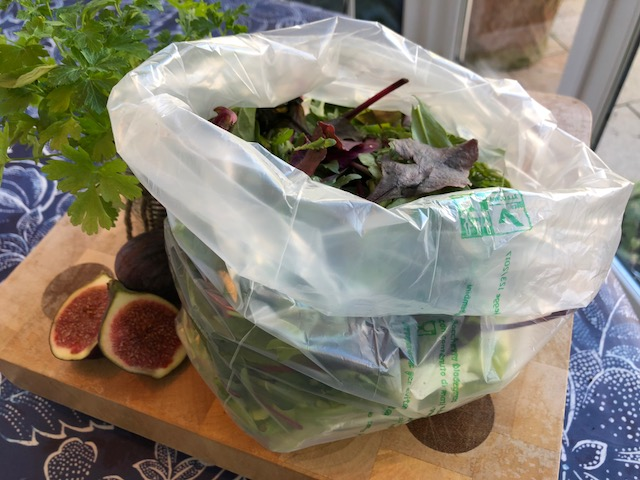 CLEAR SALAD BAG_1