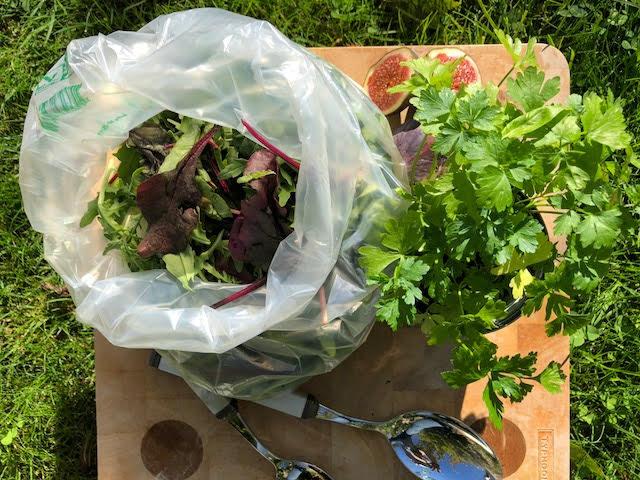 clear salad bag open